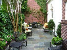 jardin avec plantes grimpante et décoration de terrasse