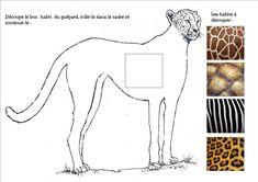 Les animaux d'Afrique ont des habits bien différents : habit_girafe...