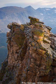 Rock Cut along Trail Ridge Road, Rocky Mountain National Park, Colorado