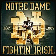 College Football Logos, Nd Football, Notre Dame Football, Notre Dame Wallpaper, Notre Dame Irish, Go Irish, Fighting Irish, Sports Figures, Leprechaun