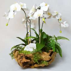 Orchid and White Geode in Wood Bowl