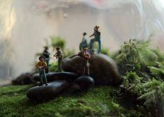 Bluegrass Terrarium - http://twigterrariums.com