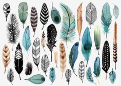 Beautiful feather illustration by Margaret Berg - tattoo inspiration