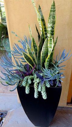 Container Garden Flowers Designs you Should Improve in your Garden https://www.possibledecor.com/2018/02/20/container-garden-flowers-designs-improve-garden/ #gardens #containergardeningflowers #gardendesign