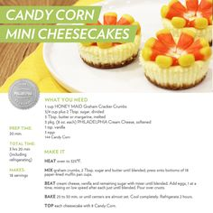 Celebrating National Candy Corn Day the best way we know... on mini cheesecakes! #halloween #recipe