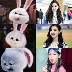 Memes Funny Faces, Funny Kpop Memes, Blackpink Memes, Best Memes, Jang Wooyoung, Twice Fanart, Nayeon Twice, Twice Kpop, Im Nayeon