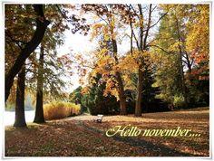 Buongiorno novembre - guten Morgen November - hello November!  #EssenReisenLeben #November #Herbst 
