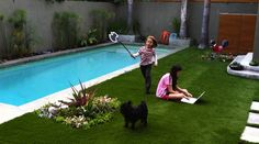 Small rectangular inground pool designs with landscape for small backyard
