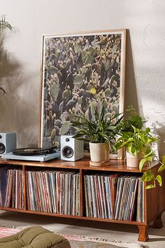 Shop Catherine McDonald Cactus Field Art Print at Urban Outfitters today. We carry all the latest styles, colors and brands for you to choose from right here. Room Interior, Interior Design, Design Interiors, Music Corner, Vinyl Room, Vinyl Storage, Record Storage, Audio Room, Deco Boheme