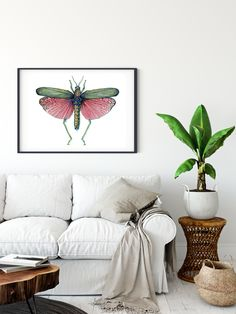 Poster of watercolor Red Locust by Martha Iserman aka Big Red Sharks Studios Watercolor Red, Sharks, Studios, Illustration Art, Tapestry, Purple, Trending Outfits, Big, Handmade Gifts