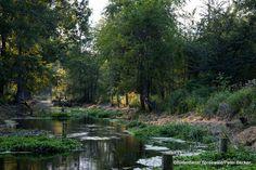 #Spreewald im #Herbst entdecken www.hotel-stern-werben.de