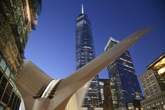 With the Opening of the WTC Transportation Hub, Has Santiago Calatrava Been Vindicated?