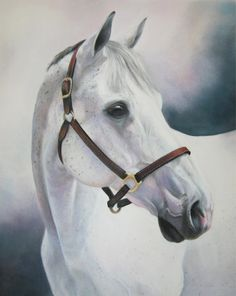 Hey, I found this really awesome Etsy listing at https://www.etsy.com/listing/121104679/grey-thoroughbred-pastel-painting-of-a