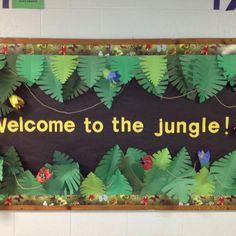 Jungle classroom door safari theme new ideas Rainforest Classroom, Jungle Theme Classroom, Rainforest Theme, Classroom Themes, Rainforest Preschool, Rainforest Project, Classroom Banner, Classroom Board, Preschool Jungle