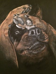 Rottweiler Facebook: Chinara's Hobby Craft (acrylic painting)