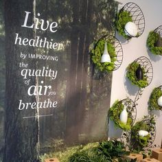 The newly finished window displays look good enough to breathe! Salon Window Display, Store Window Displays, Retail Windows, Store Windows, Visual Display, Display Design, Vitrine Design, Decoration Vitrine, Cosmetic Display