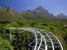 The Boomslang voted Most Beautiful Object in South Africa
