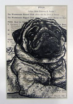 Explore our web site for even more information on pugs. It is an outstanding location for more information. Black Pug Puppies, Bulldog Puppies, Pugs And Kisses, Pug Art, Pug Pictures, Cute Pugs, Funny Pugs, Pug Love, Animal Tattoos