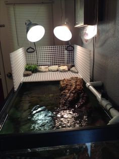 turtle basking area- I like the basking area but i would want to use rocks and that grass thing for thier cage, not the water or light or anything else