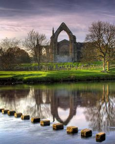 A visit to Bolton Abbey is rewarding at any time of the year for its setting on the banks of the river Wharfe alone, but there is plenty to see from the Priory ruins to the infamous Strid.
