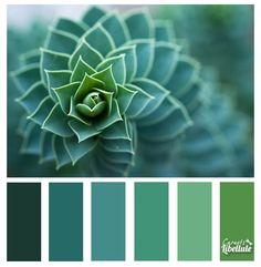 La spirale verte