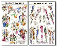 Trigger Point Charts Showing The Many Common Referral Patterns