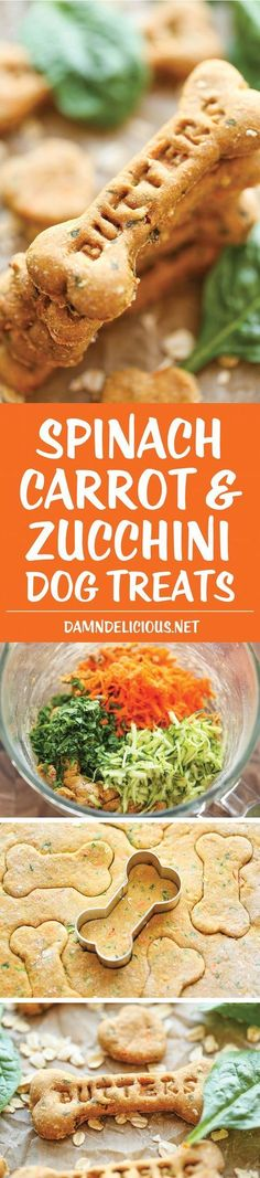Carrot and Zucchini Dog Treats Spinach, Carrot and Zucchini Dog Treats - DIY dog treats that are nutritious, healthy and so easy to make. Plus, your pup will absolutely LOVE these!Absolutely Absolutely may refer to: Puppy Treats, Diy Dog Treats, Homemade Dog Treats, Dog Treat Recipes, Healthy Dog Treats, Dog Food Recipes, Easy Recipes, Healthy Man, Happy Healthy