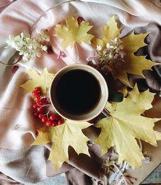 #утродоброе#mornings#momentsforlife#instamood#autumn#instamoments#autumncolors#morningtime#photofood#goodmorning#apples#tv_living#tv_colors#tv_stilllife#tv_stilllife_autumn#vsco#vscogram#instapic#foodpic#picture#cupinframe#coffeeandseasons#завтрак#breakfast#goodmorningworld#haveaniceday#rsa_vsco#fever_coffeetime