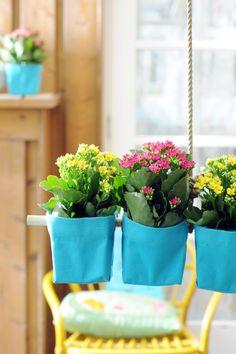 Die #Kalanchoe in een leuk potje! #planten #plants #interior