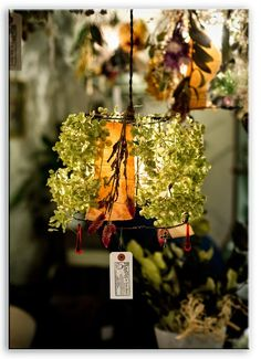PORTFOLIO / GREEN FINGERS is a creative company which proposes an independent style of greens. Managed by the plant artist Satoshi Kawamoto. Creative Company, Green Plants, Indoor Garden, Bird Feeders, Coffee Shop, Flora, Lights, Outdoor Decor, Party