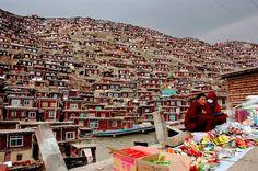 Pekín, 21 jul (EFE).- Obreros chinos acompañados de policías, funcionarios gubernamentales y soldados vestidos de paisano comenzaron la demolición del monasterio Larung Gar, el mayor del Tíbet y una de las mayores instituciones de enseñanza del budismo del mundo, denunció hoy la organización Free Tibet