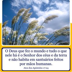 Atos dos Apóstolos 17:24