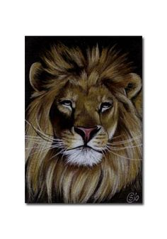 88 Best Art Canvas Textured Images On Pinterest Canvas Art Wild Animals And Animal Kingdom