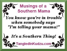 It's a Southern Thing! Four words, a whole lot of fear  Musings of a Southern Mama www.tangledinkudzu.com