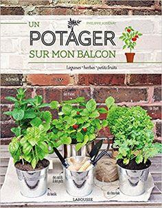 Amazon.fr - Un potager sur mon balcon - Philippe Asseray - Livres
