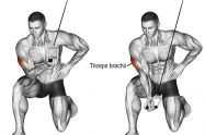 cable concentration triceps extension exercise