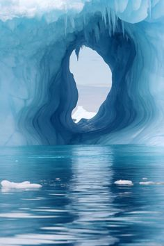 Polar portal
