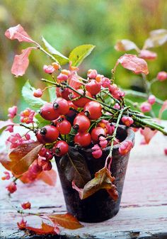 Fall is here Fruits Decoration, Grandmas Garden, Deco Floral, Fall Table, Autumn Garden, Autumn Day, Flower Boxes, Autumn Inspiration, Shades Of Red