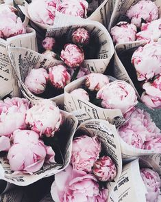 paper wrapped peonies