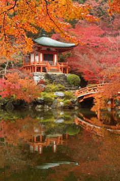 Beautiful places, Most beautiful gardens, Japanese garden design, Japanese garden, Kyoto japan, Japan temple - Go globetrotting (virtually) - #Beautifulplaces Beautiful Places In Japan, Most Beautiful Gardens, Beautiful World, Japanese Landscape, Japanese Garden Design, Japanese Gardens, Chinese Places, Japanese Temple, Japanese Castle