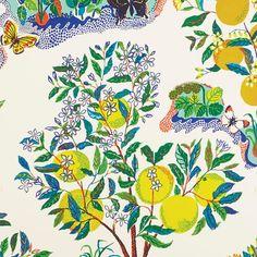 Sample - Schumacher X Josef Frank Citrus Garden Wallpaper in Primary Wallpaper For Sale, Chic Wallpaper, Wallpaper Samples, Iphone Wallpaper, Fabric Wallpaper, Kitchen Wallpaper, Wallpaper Ideas, Wall Wallpaper, Josef Frank