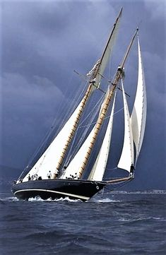 Gray skies, White sails