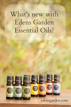 150 Ways to Use Essential Oils A Free Download Gardens A well