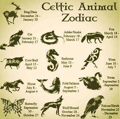 celtic symbols for zodiac Celtic Tree, Irish Celtic, Celtic Tattoo For Women Irish, Celtic Dragon, Celtic Symbols And Meanings, Druid Symbols, Gaelic Symbols, Mayan Symbols, Viking Symbols