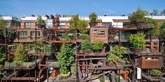 luciano pia plants 25 verde, a green urban treehouse in torino Architecture Résidentielle, Magazine Deco, Steel Structure, Green Building, Building Plans, Sustainable Design, City Block, Dome Greenhouse, Building Materials