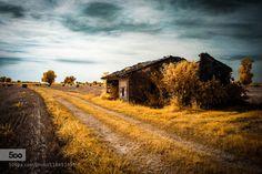The small house - Pinned by Mak Khalaf The small house of peasants scattered among the Cremona countryside. Landscapes blackbluecasacloudscountrysidecremonagrasshouseinfraredinfrarossoiritaliaitalylandscapelightlombardynikonnikond70skysmallsummersunsunsettreesyellowIR590nm by DavideCremona85