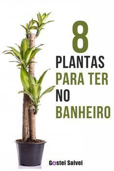 House Plants Decor, Plant Decor, Garden Trees, Trees To Plant, Plants Are Friends, Interior Plants, Plantar, Green Life, Flowers Nature