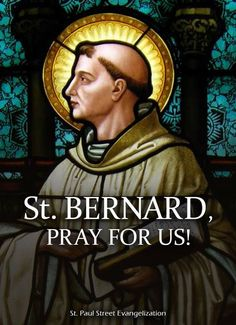 Thought for the Day – August 20 #pinterest #stbernardofclairvaux Bernard's life in the Church was more active than we can imagine possible today. His efforts produced far-reaching results. But he knew that they would have availed little without the many hours of prayer and contemplation that brought him strength and heavenly direction. His life was characterized by a deep devotion to the Blessed Mother. His sermons and books about Mary are still............