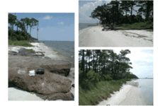 Our Barrier Islands! The Mississippi Gulf Coast features five barrier islands sitting along its shores: Cat Island, Deer Island, Horn Island, Petit Bois Island, and Ship Island. Each island offers its own unique history, attributes, and enticing features. All islands are available by private boat.