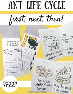 Practice writing first, next, then, after that and finally with these free ant life cycle readers and flip books!